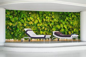 giardino verticale parete verde stabilizzata piscina